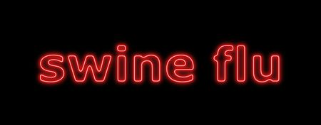 Neon sign about the schwein flu on black background Stock Photo - 4787207