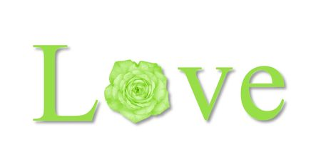 The text love with a flower on white background.