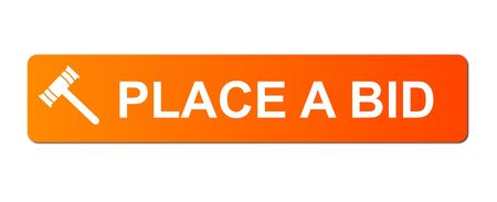Place Bid button with a auction hammer on white background. photo
