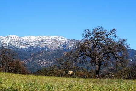 panorama of Topa Topa Mountains in Ojai  Stock Photo