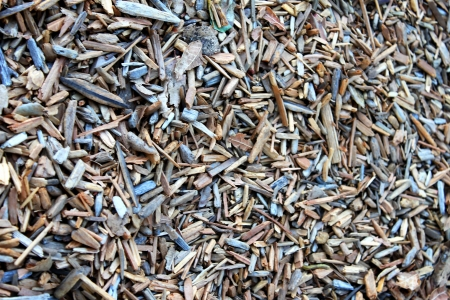 Wood chippings on the gound in a park, close up background. photo