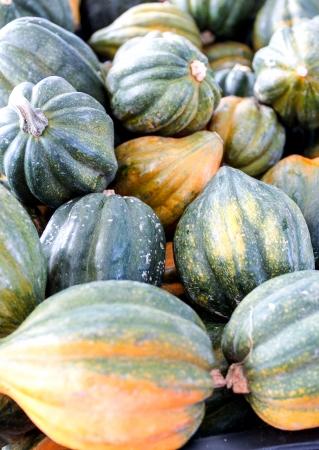 Pile of acorn squash at a farmers market