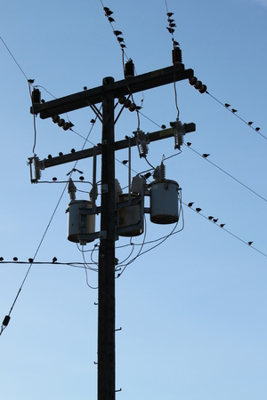power cables: Power pole with three transformes and wires. Stock Photo