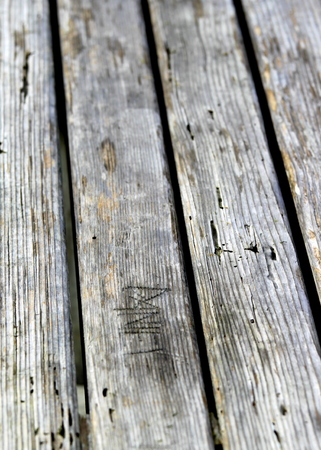 drywood: Texture of old wood with many termites holes.