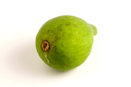 Close up of a green fig on white background. Stock Photo