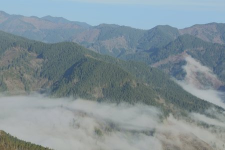 Fog fills the valleys below Kings Mountain in the Tillamook State Forest, Oregon Coast Range
