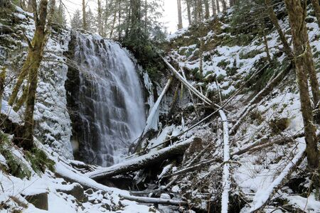 University Falls, Tillamook State Forest, Oregon in winter. This is the most famous waterfall in that state forest and required a hike through snow to see this view. Access is easy when there is no snow on the ground, only a short hike required. Stock Photo - 133905192