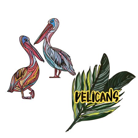 Pelicans clip-art design print.