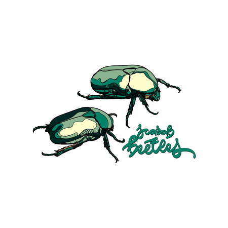 Vector card with scarab beetles and hand drawn inscription on white background.