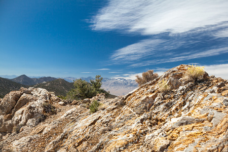 high sierra: Eastern Sierra Nevada View