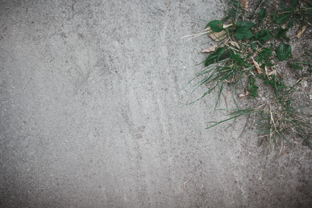 lia: Asphalt with dust and grass background Stock Photo