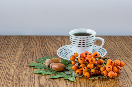 sorb: Mug of coffee, a few acorns, branch of mountain ash and oak leaves on a wooden table Stock Photo