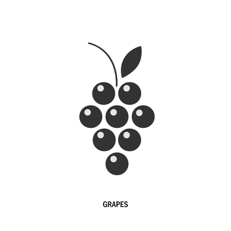 bunch: bunch of grapes. Illustration