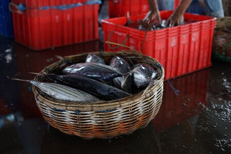 Vendor selling fresh baby Tuna Fish on traditional fish market Indonesia