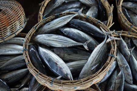 Bunch fresh tuna fish stacked in the traditional fish market indonesia