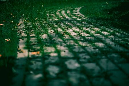Stone Pathway with green grass in a city Green Park 写真素材