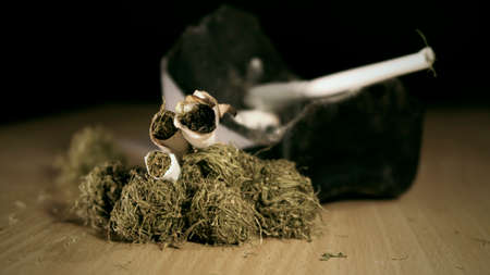 Smoking of dried marijuana and a rolled joint