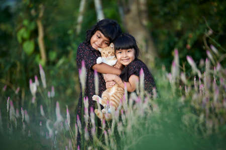 Two cute little girls playing with kitten on beautiful sunny day at park Stockfoto