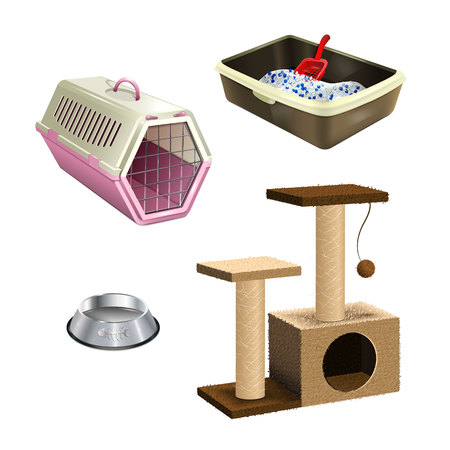 filler: Pet shop accessories. Set of pet supplies. Isolated collection of cat products. A tree, litter box, bowl and cat carrier on white background.