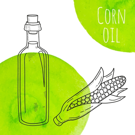 Hand drawn corn oil bottle with green watercolor spots. Isolated cute bottle with healthy cooking oil and corn. Sketchy doodle illustration for restaurant, organic shop. Glass jug with cork. Illustration