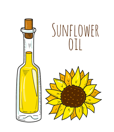 decanter: Colorful hand drawn sunflower bottle. Isolated cute bottle with healthy cooking oil and sunflower. Sketchy cartoon illustration for restaurant, organic shop. Glass jug with cork. Illustration