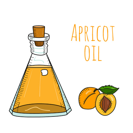 apricot kernels: Colorful hand drawn apricot oil bottle. Isolated cute decanter with healthy cooking oil and apricots. Sketchy cartoon illustration for aroma therapy, cosmetic, organic shop. Glass jug with cork.