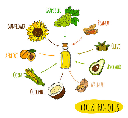 Hand drawn infographic of cooking oil sorts. Different kinds of edible vegetable food oils. With origin products olive, apricot, corn, grape seed, walnut, coconut, avocado, peanut and sunflower. Illustration