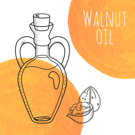 decanter: Hand drawn walnut oil bottle with orange watercolor spots. Isolated cute decanter with food oil and walnuts. Sketchy doodle illustration for aroma therapy, cosmetic, organic shop. Glass jug with cork.
