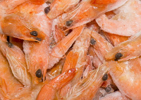 fine fish: Frozen fine natural fresh pink shrimps in ice at fish market Stock Photo