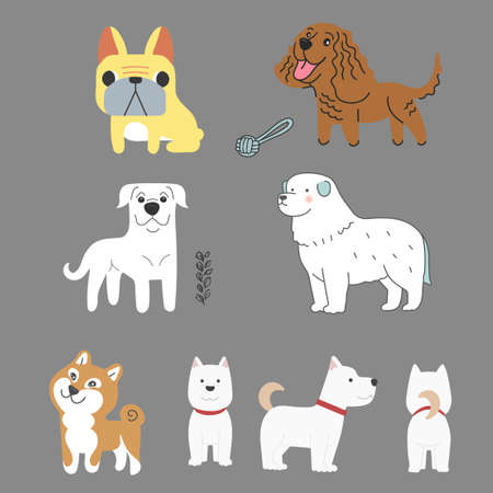 Vector dog character collection set