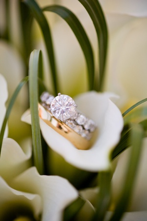 wedding rings 版權商用圖片