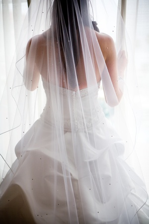 bridal gown: wedding dress and veil