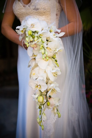Bride holding a bouquet Stock Photo