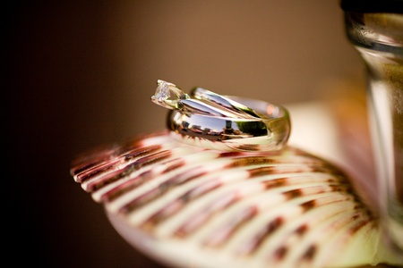 Rings Stock Photo - 9992739