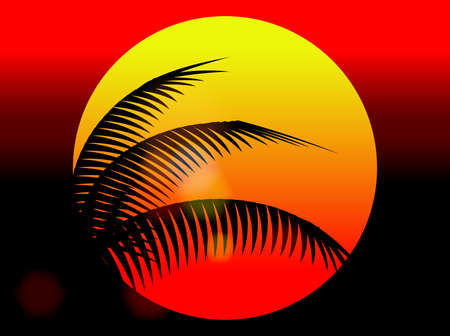 coconut tree: summer holiday sunset and coconut tree Illustration