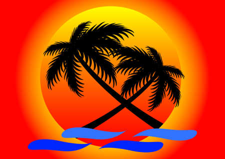 coconut tree: summer sunset and coconut tree background