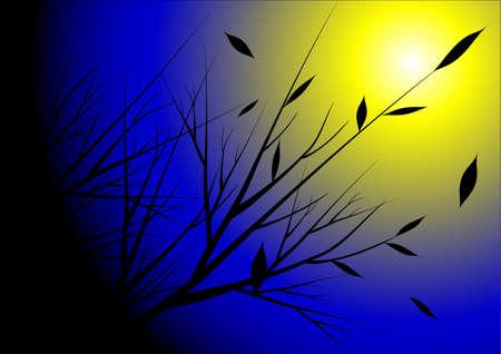 moon light: moon light vector background