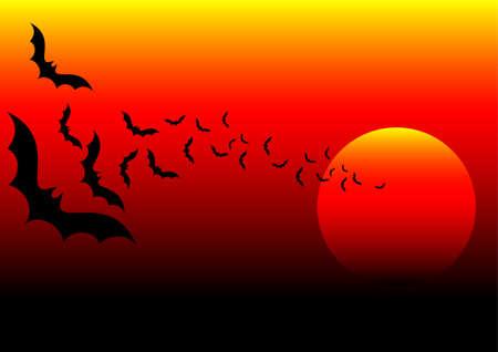 africa sunset: bat africa and sunset background