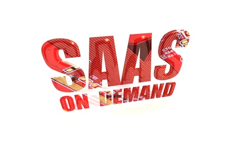 private information: SAAS On Demand Text on White Background