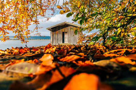 boathouse: autumn boathouse