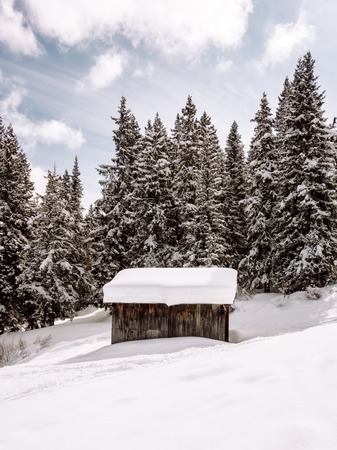 winter dolomites cabin forest