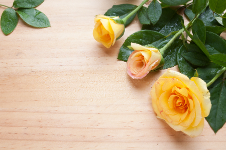 wooden surface: Yellow roses on the wood table