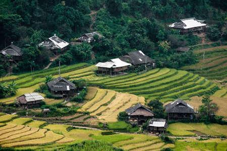 Terraced fields, minority village  Tu Le Valley, Mu Cang Chai District, Yen Bai Province, Vietnam