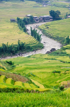 Curve of stream, Muong Hoa valley terraced fields, Sa Pa Town, Vietnam