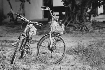 Couple of bicycle in vintage black and white Stock Photo
