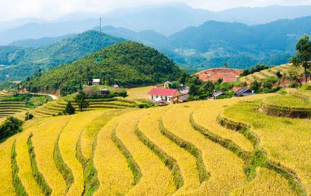 La Pan Tan Terraced fields, Mu Cang Chai, Yen Bai, Vietnam Stock Photo