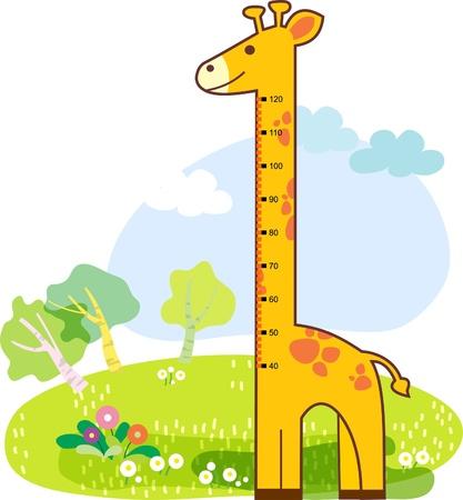 for children: girafee growth chart for children Illustration