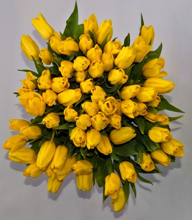 bunch up: The big bouquet of yellow tulips