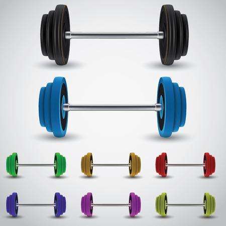 barbel: weights vector illustration. Barbel varian 3 colored