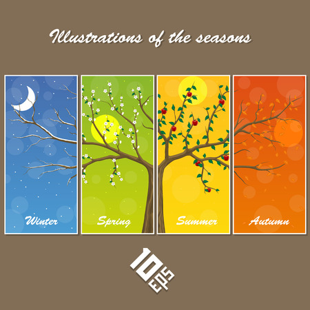 Seasons in the tree. cover illustration. Vector Illustration